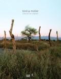 Teresa Moller Unveiling the Landscape